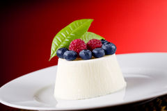 Panna cotta with Berries on red background Stock Photography