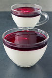 Panna cotta with berry coulis Stock Photography