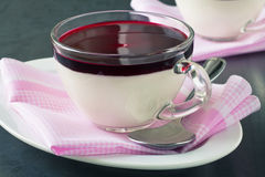 Panna cotta with berry coulis Stock Images