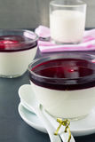 Panna cotta with berry coulis Royalty Free Stock Photo