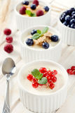 Panna cotta with berry fruits Stock Photography