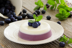 Panna cotta. With blueberries and mint stock photos
