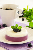 Panna cotta with blueberries. Royalty Free Stock Photography