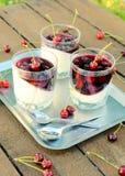 Panna cotta and cherries Royalty Free Stock Photo