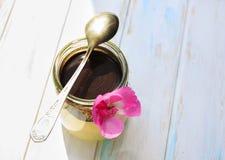 Panna cotta della vaniglia con la salsa di cioccolato, dessert italiano fotografia stock libera da diritti