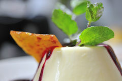 Panna cotta dessert Royalty Free Stock Photo