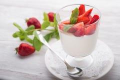 Panna cotta dessert Stock Image