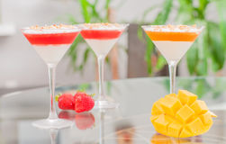 Panna cotta dessert with fruit jelly. Royalty Free Stock Photo