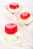 Panna cotta dessert Royalty Free Stock Image