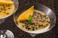 Panna cotta dessert Royalty Free Stock Images