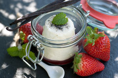 Panna cotta. Fresh panna cotta in a preserving glass stock image