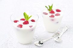 Panna cotta with fresh raspberries. On a white background Stock Image