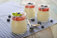Panna cotta with fresh strawberry Royalty Free Stock Image