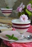 Panna Cotta Gelaagd de bessendessert van de vanillemelk Pannacotta in glas met aardbeijello Traditioneel Italiaans dessert Exempl royalty-vrije stock afbeelding