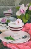 Panna Cotta Gelaagd de bessendessert van de vanillemelk Pannacotta in glas met aardbeijello Traditioneel Italiaans dessert Exempl stock foto