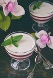 Panna Cotta Gelaagd de bessendessert van de vanillemelk Pannacotta in glas met aardbeijello Traditioneel Italiaans dessert Exempl stock afbeelding