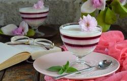 Panna Cotta Gelaagd de bessendessert van de vanillemelk Pannacotta in glas met aardbeijello Traditioneel Italiaans dessert Exempl stock fotografie