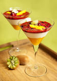 Panna cotta with kiwi, mango and forrest fruit. A great dessert - panna cotta with kiwi, mango and forrest fruit, served in martini glasses decorated wtih kiwi Stock Photography