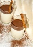 Panna cotta med cocaopulver arkivfoton