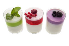 Panna cotta with mint, red currant and blackberry. Panna cotta cooked cream is an Italian dessert of sweetened cream thickened with gelatin and molded. The cream Stock Images