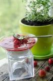 Panna-Cotta mit Erdbeersoße Stockbild