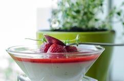 Panna-Cotta mit Erdbeersoße Lizenzfreies Stockfoto