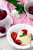 The panna cotta  with plum sauce Stock Photo