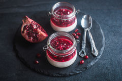 Panna Cotta with pomegranate sauce Royalty Free Stock Photos