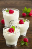 Panna cotta with raspberry Royalty Free Stock Images