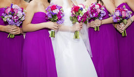 Panna młoda i Bridemaids Obrazy Royalty Free