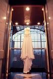 panna młoda jest sukienka Obraz Royalty Free