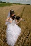 panna młoda skrzypce Obraz Royalty Free
