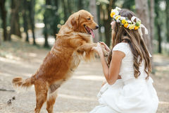 Panna młoda z psem w parku Obrazy Royalty Free