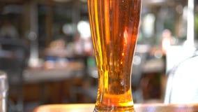 Panna som skjutas av exponeringsglas av kallt öl stock video