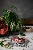 Pannacotta με τα λουλούδια ακακιών και τη σάλτσα κερασιών στοκ φωτογραφία με δικαίωμα ελεύθερης χρήσης