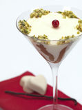 Pannacotta in a martini glass. A bicolor pudding decorated with cranberries ,pistachios and chocolate,served in a martini glass royalty free stock image