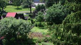 Pannasikt av den moderna trädgården med simbassängen stock video