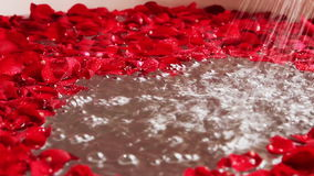 Pannaskott av röda roskronblad i badkar med springduschen, hotell Amar Villas, Agra, Uttar Pradesh, Indien
