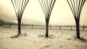 Pannaskott av vinterlandskapet, tipi arkivfilmer