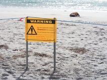 Panneau d'avertissement de faune avec le joint blessé sur la plage photos stock