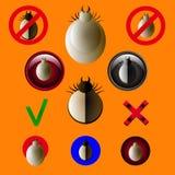 Panneau d'avertissement de parasite de coutil Ensemble de vecteur d'acarides Araignée d'acarides de la poussière d'acarides Rouge Photos stock