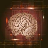 Panneau de cerveau Image libre de droits