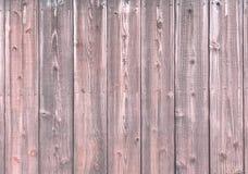 Panneau de mur en bois pâle Image stock