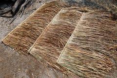 Panneau de vétiver pour le toit de hutte, toit de paille sur la terre, panneau de hutte de toit de paille Images stock