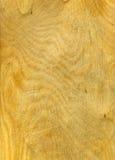Panneau en bois Images libres de droits