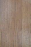 Panneau en bois de chêne Images libres de droits
