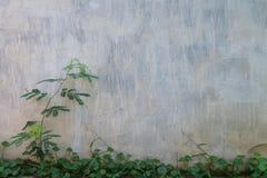 Panneau, fond Image libre de droits