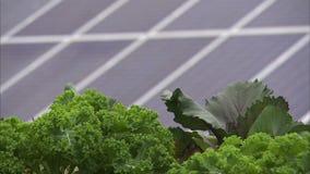 Panneau solaire à une ferme clips vidéos