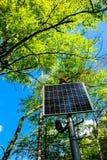 Panneau solaire ensoleillé dans la forêt Images libres de droits