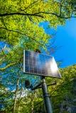 Panneau solaire ensoleillé dans la forêt Image stock
